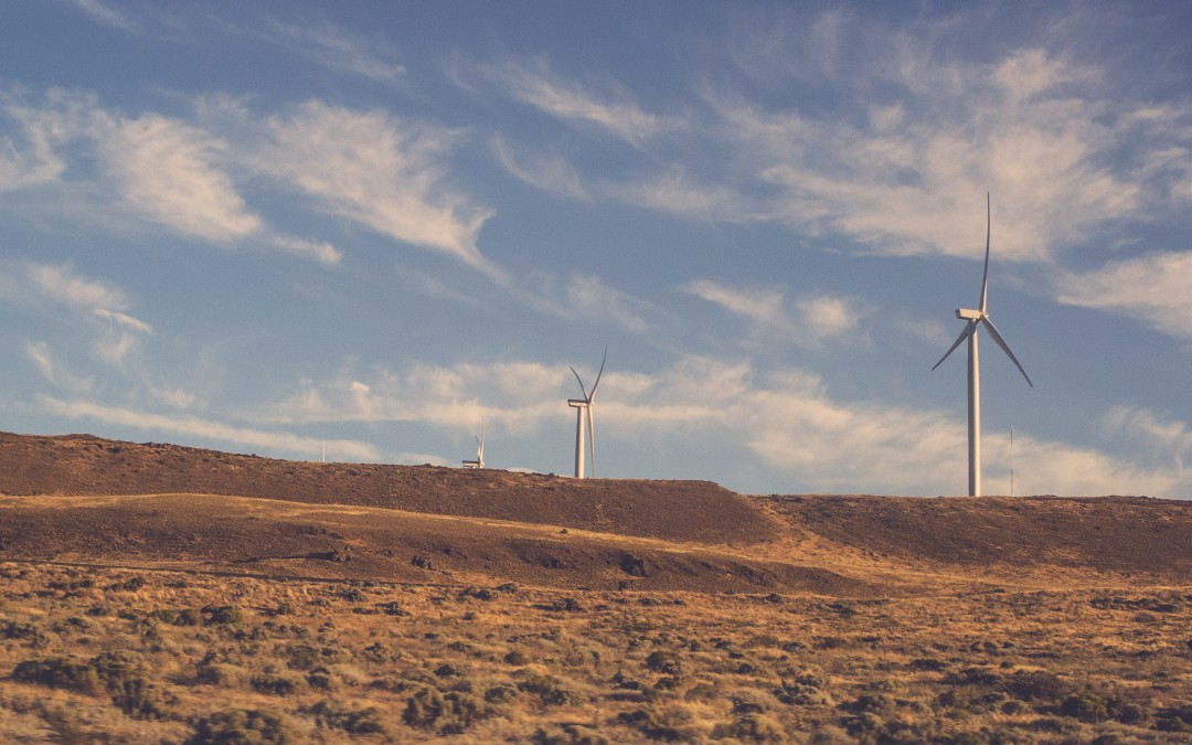 Krise auch im Sektor der Erneuerbaren Energien